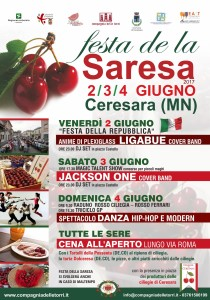 Saresa1