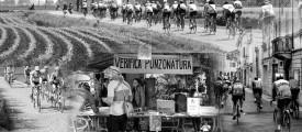 PUNZONATURA