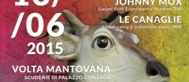 manifestos - Copia