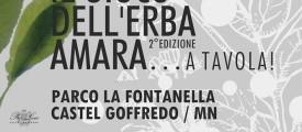tortello2